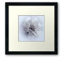 A Simple Touch Of Grace .... Framed Print