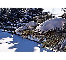 Michigan's winter beauty Photographic Print
