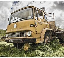 Abandoned Bedford Truck, Taihape by Jake Southgate