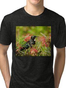 Nectar Feast - Tui NZ Tri-blend T-Shirt