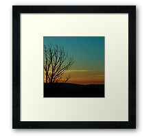 The Lonely Wait Framed Print