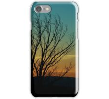 The Lonely Wait iPhone Case/Skin