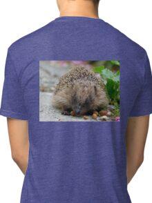 Hedgehog NZ Tri-blend T-Shirt
