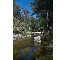 Summer Stream Photographic Print