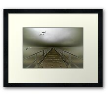 geese flight Framed Print