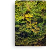 Autumn reflections in the Rhone river Canvas Print