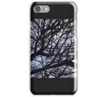 Tree Limbs iPhone Case/Skin
