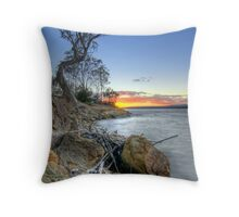 Another Year Passed Throw Pillow