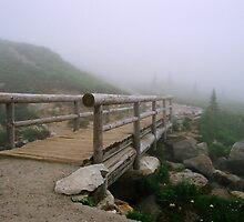 Bridge to Paradise - Mt. Rainier National Park by Julia Washburn