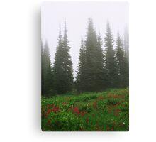 Mt. Rainier National Park Canvas Print