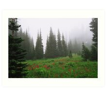 Mt. Rainier National Park Art Print