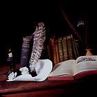 Shakespeare by BSRPhotografix