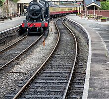 Welsh Railway  by Adrian Evans
