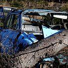 9.3.2015: Tree Fallen on the Car by Petri Volanen