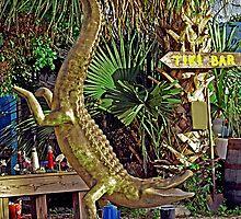 Aligator Handstand by Memaa