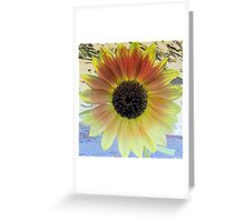 LOOKING  INTO A  SUNFLOWER    Greeting Card