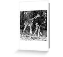 BFF ~ Best Friends Forever Greeting Card