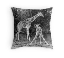 BFF ~ Best Friends Forever Throw Pillow