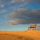 Come Take a Seat by Nickolay Stanev