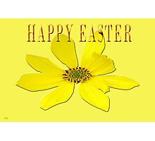 EASTER 55 Photographic Print