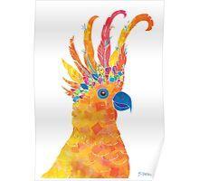 Rainbow Cocky Poster