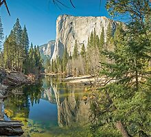 Window on El Capitan by TonyCrehan