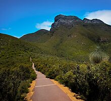 BLUFF KNOLL by Peter Hodgson