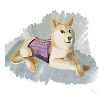 Doge in a Corset Photographic Print