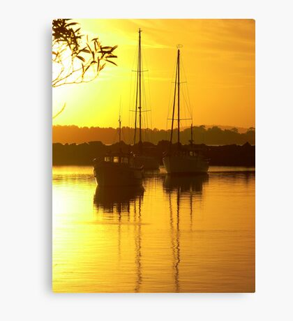 Glorious Golden Boats Canvas Print