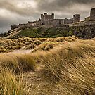 Bamburgh Castle - Northumberland by David Lewins