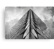 touch the sky Canvas Print