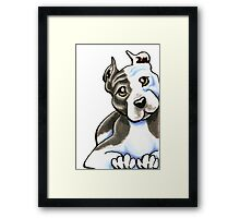 Amstaff Lean on Me Framed Print