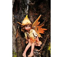 Elf in a tree Photographic Print
