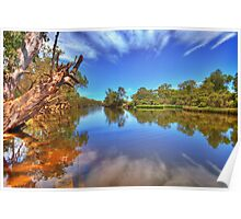 Swan River reflections Poster