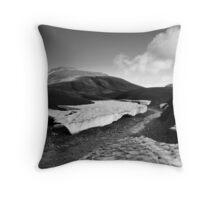 Iceland - Landmannalaugar Throw Pillow