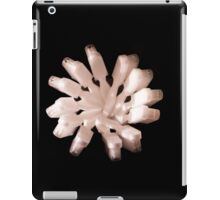 White Toothbrushes seen from above iPad Case/Skin