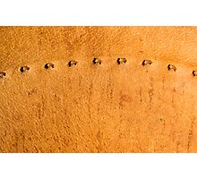 leather background Photographic Print