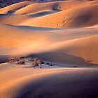 The dunes of Taar désert by Rémi Bridot