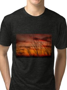 Orange sky with branches Tri-blend T-Shirt