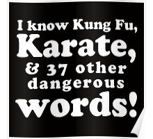 I Know Kung Fu Poster