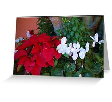 Red and White 2 Greeting Card