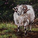 """""""Mad Sheep""""  by Alice McMahon"""