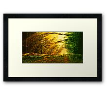 Picture 2015063 Justin Beck sunset in the Forest Framed Print