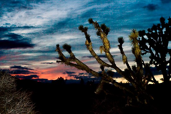 Wee Thump Sunset by Chris Clarke