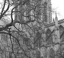 York Minster by Print Student