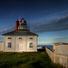 Cape Spear by Kevin  Kroeker