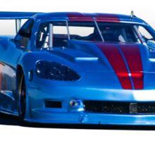 2004 Chevrolet Corvette SP Racecar  Sticker