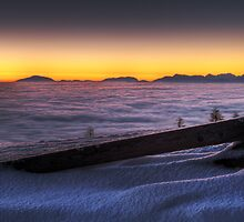 Waiting for the Sunrise by Manuel Wieczorek