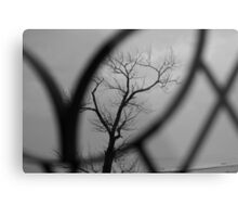 Through the looking glass... Metal Print
