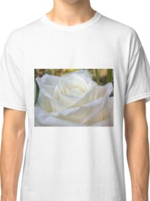Close up of white rose 8 Classic T-Shirt